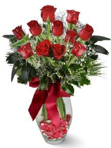 9 adet gül  İstanbul Kadıköy internetten çiçek satışı  kirmizi gül