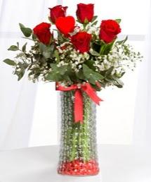 Cam vazoda 5 adet kırmızı gül kalp çubuk  İstanbul Kadıköy ucuz çiçek gönder
