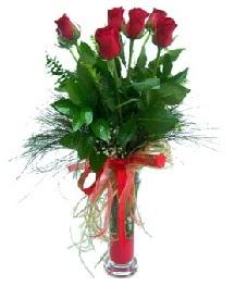 vazo içerisinde 5 kırmızı gül  İstanbul Kadıköy güvenli kaliteli hızlı çiçek