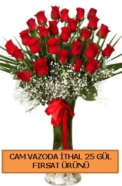 Cam vazoda ithal 1. kalite 25 gül  İstanbul Kadıköy internetten çiçek satışı