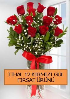 İthal kırmızı 12 adet kaliteli gül  İstanbul Kadıköy ucuz çiçek gönder