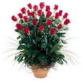 İstanbul Kadıköy uluslararası çiçek gönderme  10 adet kirmizi gül cam yada mika vazo