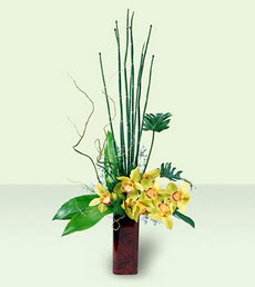 İstanbul Kadıköy çiçek siparişi sitesi   cam yada mika Vazoda dal orkide tanzim