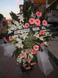 kazablanka,gerbera,sebboy ferforje  İstanbul Kadıköy çiçekçi mağazası