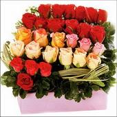 15 adet renkli gül ve cam   İstanbul Kadıköy çiçekçi mağazası