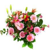 lilyum ve gerbera çiçekleri - çiçek seçimi -  İstanbul Kadıköy çiçek gönderme