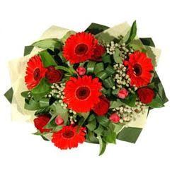 İstanbul Kadıköy ucuz çiçek gönder   5 adet kirmizi gül 5 adet gerbera demeti