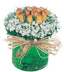 İstanbul Kadıköy internetten çiçek satışı  Cam yada mika içerisinde 9 adet  gül aranjmani