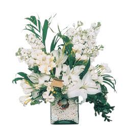 İstanbul Kadıköy internetten çiçek siparişi  sadece beyazlardan olusmus mevsim cam yada mika tanzim