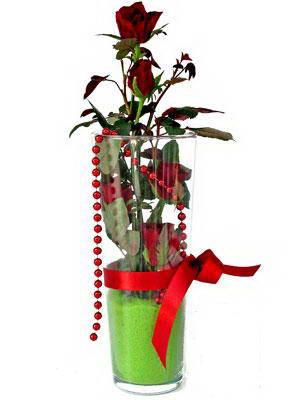 İstanbul Kadıköy online çiçek gönderme sipariş  Cam yada mika içerisinde 9 adet kirmizi gül - sevdiklerinize özel