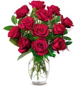 İstanbul Kadıköy online çiçek gönderme sipariş  1 düzine kirmizi gül sevenlere özel vazo gülleri
