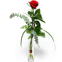 İstanbul Kadıköy 14 şubat sevgililer günü çiçek  Sana deger veriyorum bir adet gül cam yada mika vazoda