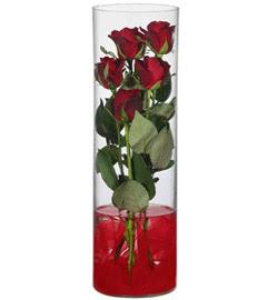 cam içerisinde 7 adet kirmizi gül  İstanbul Kadıköy çiçekçiler