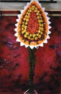 İstanbul Kadıköy çiçek satışı  dügün açilis çiçekleri  İstanbul Kadıköy çiçek , çiçekçi , çiçekçilik