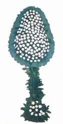 İstanbul Kadıköy online çiçek gönderme sipariş  dügün açilis çiçekleri  İstanbul Kadıköy güvenli kaliteli hızlı çiçek