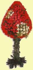İstanbul Kadıköy çiçek gönderme  dügün açilis çiçekleri  İstanbul Kadıköy çiçek online çiçek siparişi