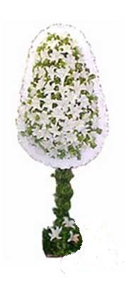 İstanbul Kadıköy çiçek siparişi sitesi  nikah , dügün , açilis çiçek modeli  İstanbul Kadıköy online çiçek gönderme sipariş