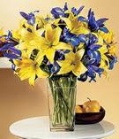 İstanbul Kadıköy anneler günü çiçek yolla  Lilyum ve mevsim  çiçegi özel