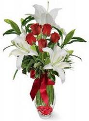 İstanbul Kadıköy çiçek siparişi vermek  5 adet kirmizi gül ve 3 kandil kazablanka