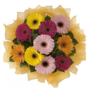 İstanbul Kadıköy İnternetten çiçek siparişi  11 adet karışık gerbera çiçeği buketi