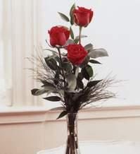 İstanbul Kadıköy internetten çiçek satışı  Vazoda 3 adet güzel gül