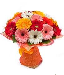 Renkli gerbera buketi  İstanbul Kadıköy anneler günü çiçek yolla