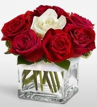 Tek aşkımsın çiçeği 8 kırmızı 1 beyaz gül  İstanbul Kadıköy uluslararası çiçek gönderme