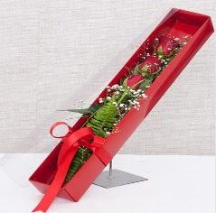Kutu içerisinde 3 adet kırmızı gül  İstanbul Kadıköy online çiçek gönderme sipariş