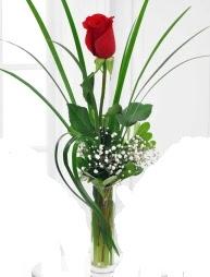 Cam içerisinde 1 kırmızı gül  İstanbul Kadıköy çiçek gönderme sitemiz güvenlidir