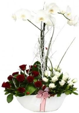 Tek dal beyaz orkide 8 beyaz 8 kırmızı gül  İstanbul Kadıköy çiçek satışı