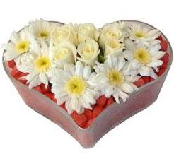 Kalp içerisinde 7 beyaz gül ve papatyalar  İstanbul Kadıköy internetten çiçek satışı