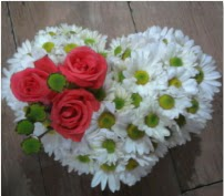 3 adet kırmızı gül mika kalptte papatyalar  İstanbul Kadıköy internetten çiçek satışı