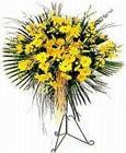 İstanbul Kadıköy yurtiçi ve yurtdışı çiçek siparişi  Sari kazablanka Ferforje