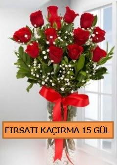 15 İthal kırmızı gül büyük başlı orjinal  İstanbul Kadıköy çiçek siparişi sitesi
