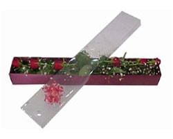 İstanbul Kadıköy anneler günü çiçek yolla   6 adet kirmizi gül kutu içinde
