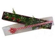 İstanbul Kadıköy hediye çiçek yolla  3 adet gül.kutu yaldizlidir.