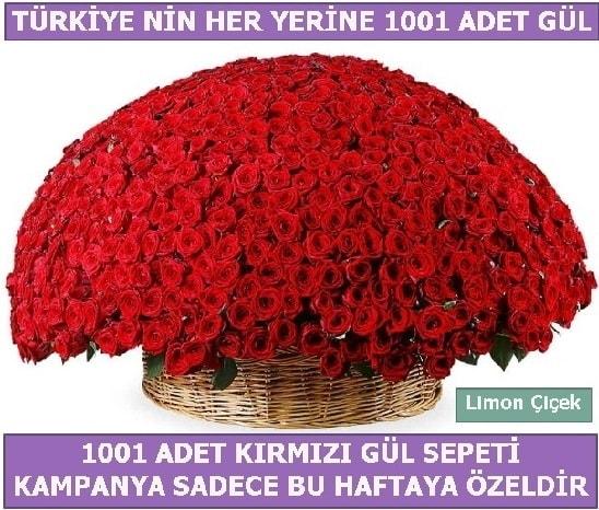 1001 Adet kırmızı gül Bu haftaya özel  İstanbul Kadıköy İnternetten çiçek siparişi