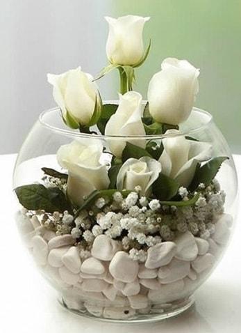 Beyaz Mutluluk 9 beyaz gül fanusta  İstanbul Kadıköy çiçek siparişi sitesi