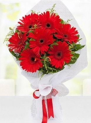 Kırmızı Gelbera Buketi  İstanbul Kadıköy internetten çiçek siparişi