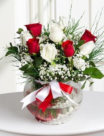 Aşk Küresi  5 beyaz 5 kırmızı gül fanusta  İstanbul Kadıköy internetten çiçek satışı