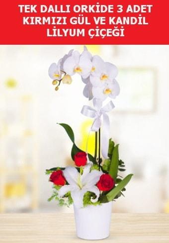Tek dallı orkide 3 gül ve kandil lilyum  İstanbul Kadıköy çiçek yolla
