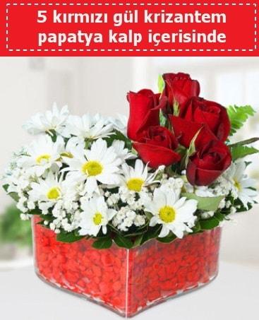 mika kalp içerisinde 5 kırmızı gül papatya  İstanbul Kadıköy çiçek gönderme