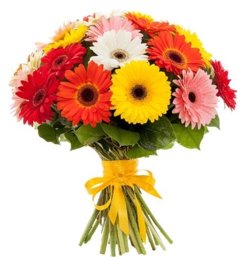 Gerbera demeti buketi  İstanbul Kadıköy çiçek satışı
