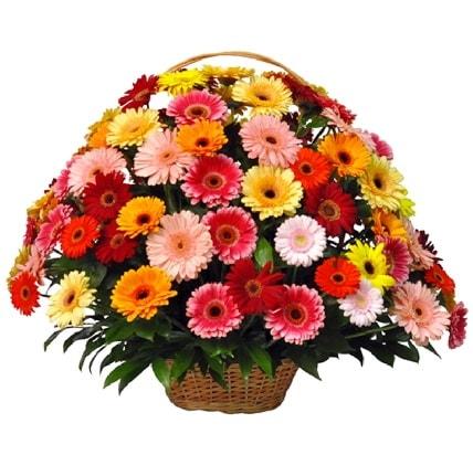 Karışık renkli büyük gerbera sepet aranjmanı  İstanbul Kadıköy çiçek gönderme sitemiz güvenlidir
