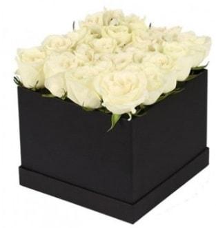 Kare kutuda 19 adet beyaz gül aranjmanı  İstanbul Kadıköy çiçekçi telefonları