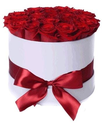 29 adet kırmızı gülden kutu çiçeği  İstanbul Kadıköy güvenli kaliteli hızlı çiçek