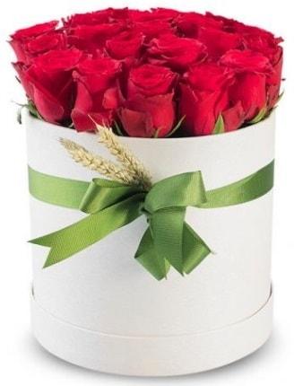 Özel kutuda 25 adet kırmızı gül çiçeği  İstanbul Kadıköy çiçek satışı
