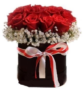 Siyah kutuda 23 adet kırmızı gül tanzimi  İstanbul Kadıköy çiçek gönderme sitemiz güvenlidir
