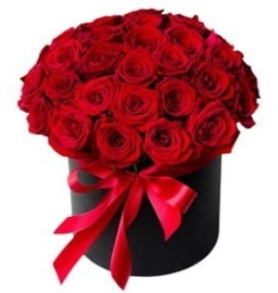 25 adet kırmızı gül kız isteme çiçeği  İstanbul Kadıköy internetten çiçek satışı