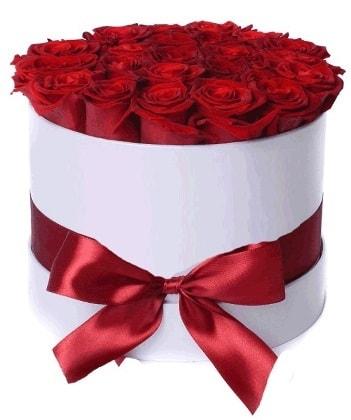 33 adet kırmızı gül özel kutuda kız isteme   İstanbul Kadıköy çiçekçiler